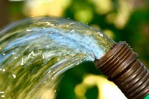 избавление от кротов водой